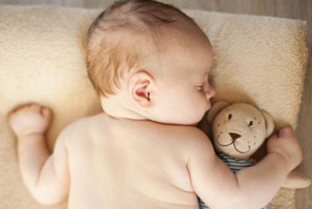 am-nascut-cuibul-berzelor